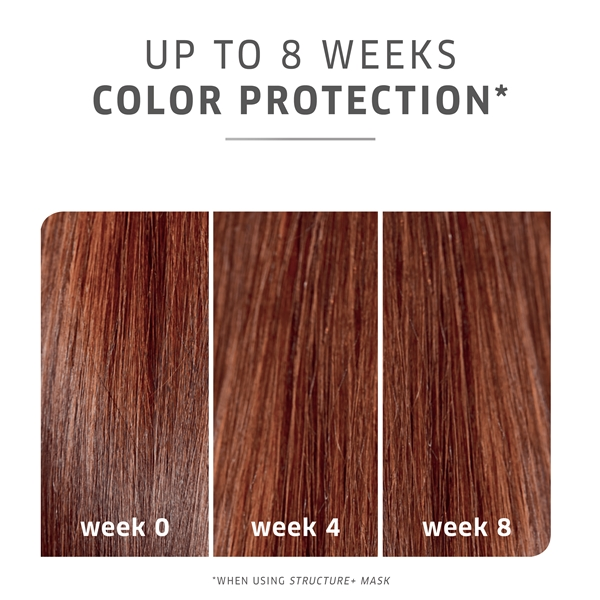 ColorMotion+ Color Protection Shampoo (Picture 5 of 7)